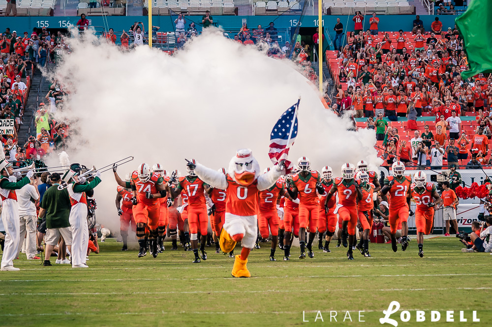 FThe Miami Hurricanes official mascot, Sebastian the Ibis, leads the entire football team in a rush onto the field as the University of Miami hosts Florida A&M University at Sun Life Stadium in Miami Gardens on Saturday, September 6, 2014. © LaRae Lobdell |Camera: Nikon D700 with 85/1.8 lens
